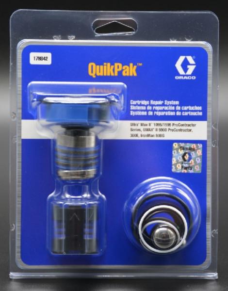 WBV24 - Graco QuikPak Reparaturset 17H842